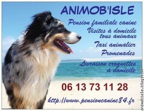 ANIMOB'ISLE